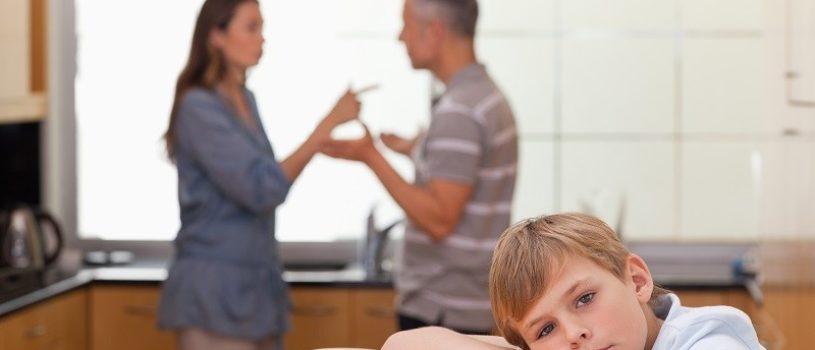 Споры о детях — разновидности и порядок разрешения